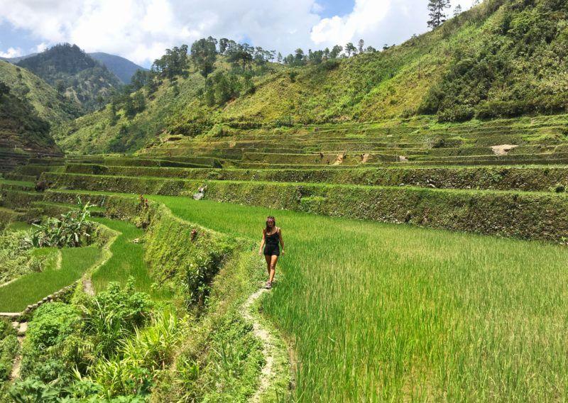 Banaue Philippines rizières