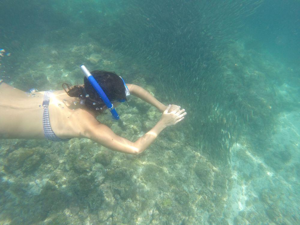 que faire aux philippines spots de snorkeling