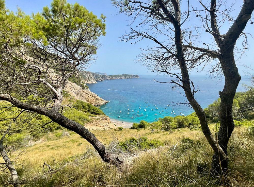 platja del colls baix plus belles plages majorque