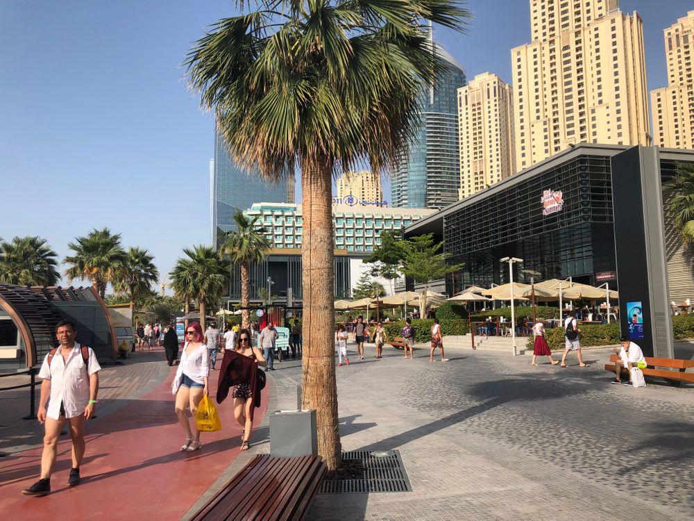 Marina The Walk Dubai