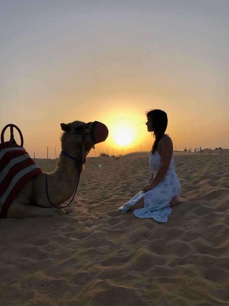 lever de soleil dubai chameau