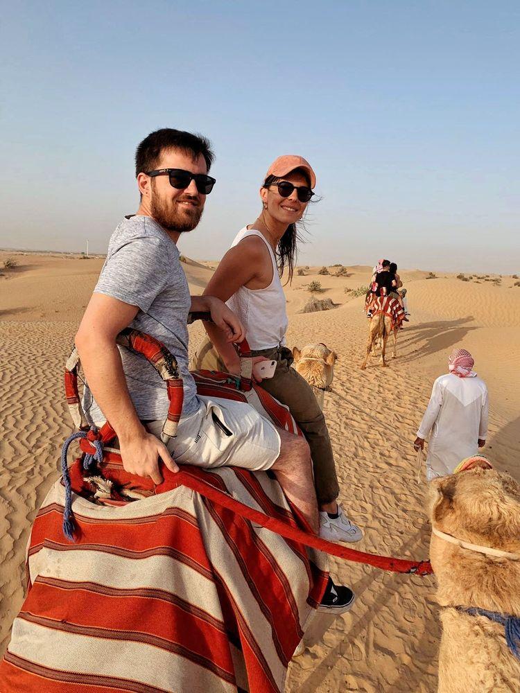 chameau dromadaire Dubai désert insolite