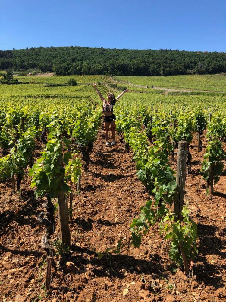 Bourgogne Parcours en vélo vignes Dijon
