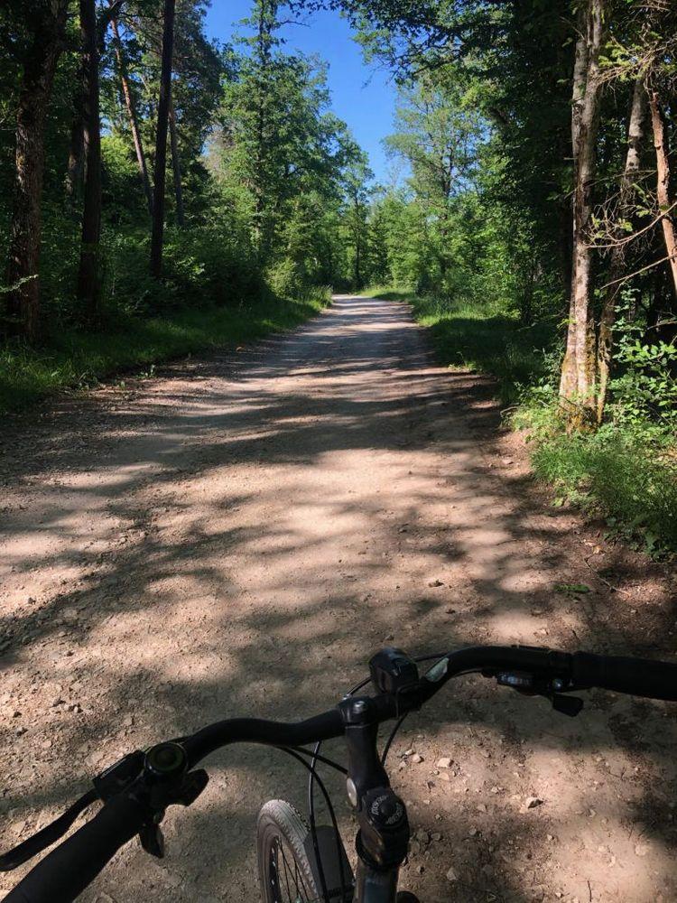 Bourgogne Parcours en vélo forêt Dijon