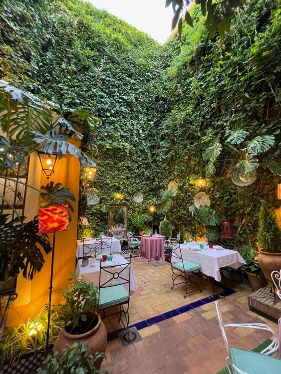 casa manolo leon tapas seville patio restaurant