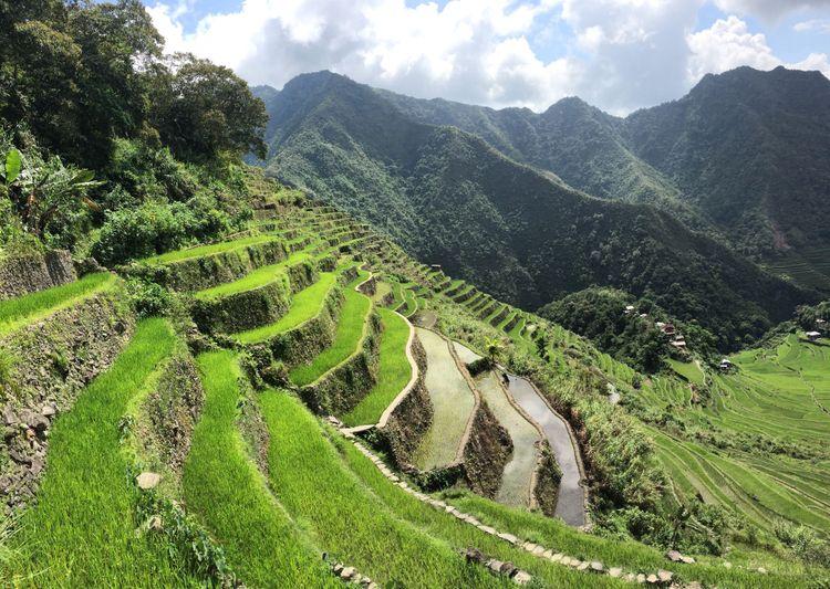 Banaue Batad rizières Philippines